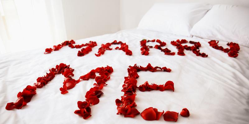 Rose Petal Proposal